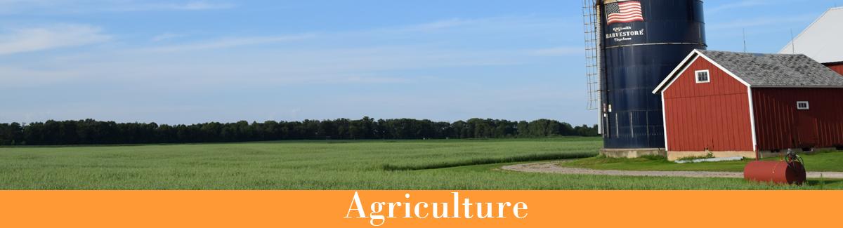 Barn and silo in a farm field