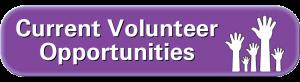 Current Volunteer Opportunities