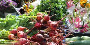 Vegetables on a table at a farm market