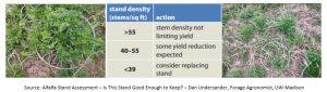 Alfalfa pictures and stand density table