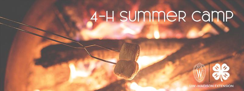 Marshmallows roasting over campfire